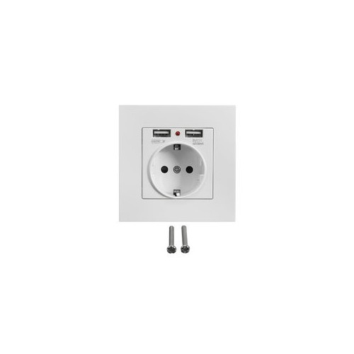 Schuko-Wall Socket with 2 USB ports