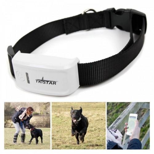 TKSTAR GPS Pet Collar Locator Tracker GPRS Tracking System FREE APP
