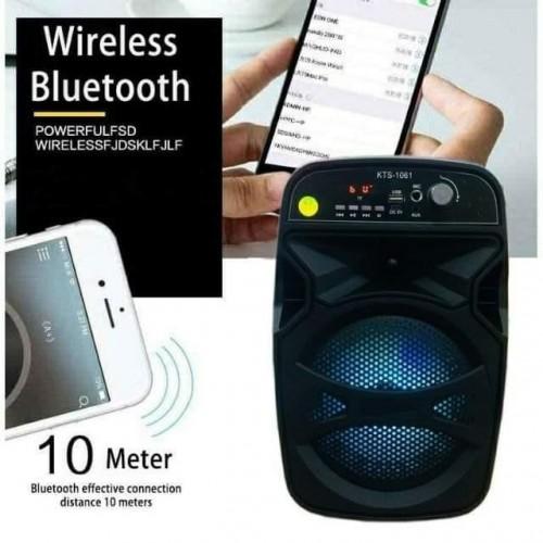 Wireless karaoke with mic