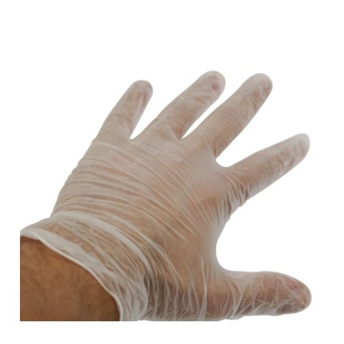 Vinyl Gloves, Lightly Powdered