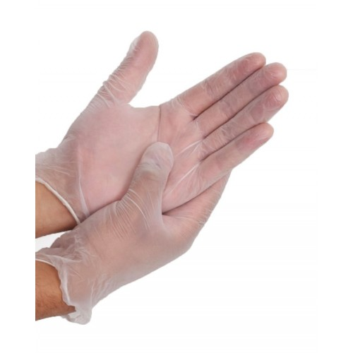 Details about 100 Pcs Disposable Vinyl Glove Multifuction Clear Gloves For Housework Salon
